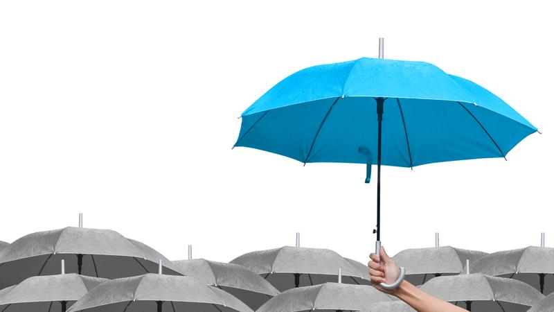Blue Umbrella Over Gray Umbrellas 800x450