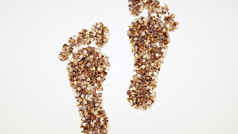 Financial Footprint